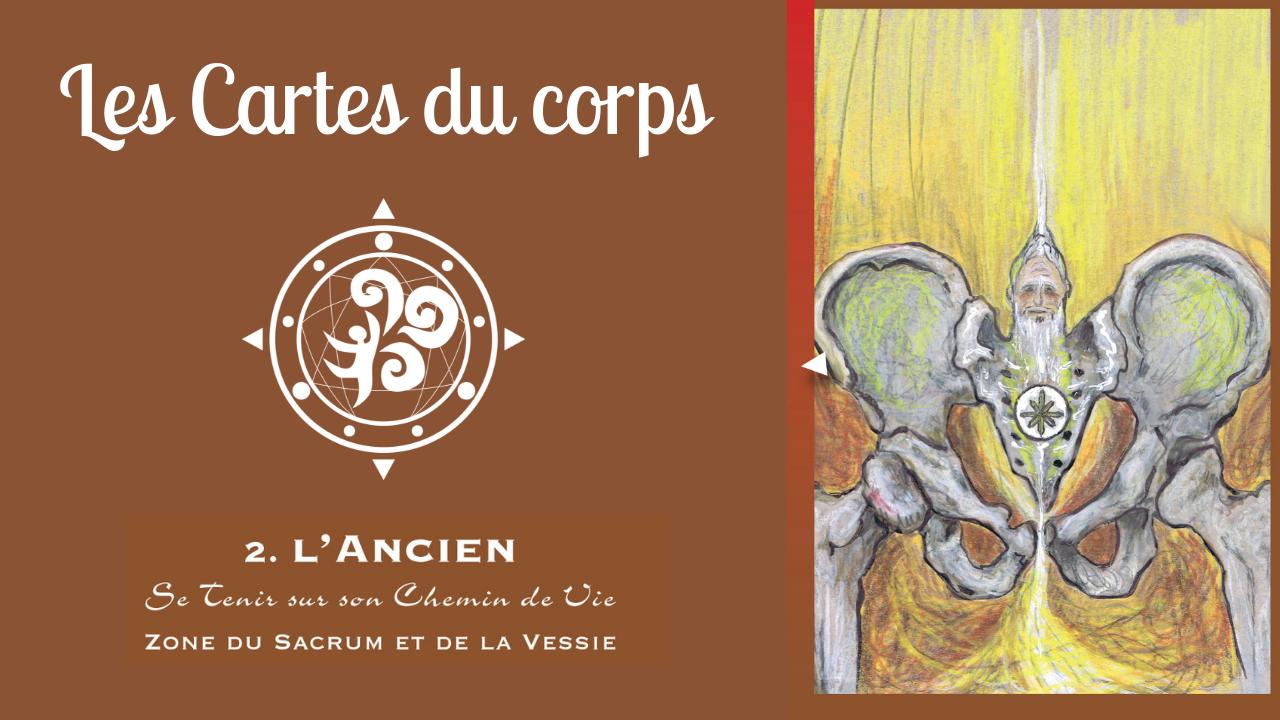 Symbolique du Sacrum, des ailes iliaques et des reins – les Cartes du Corps